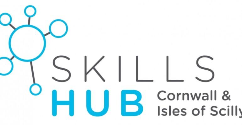 Skills hub logo only