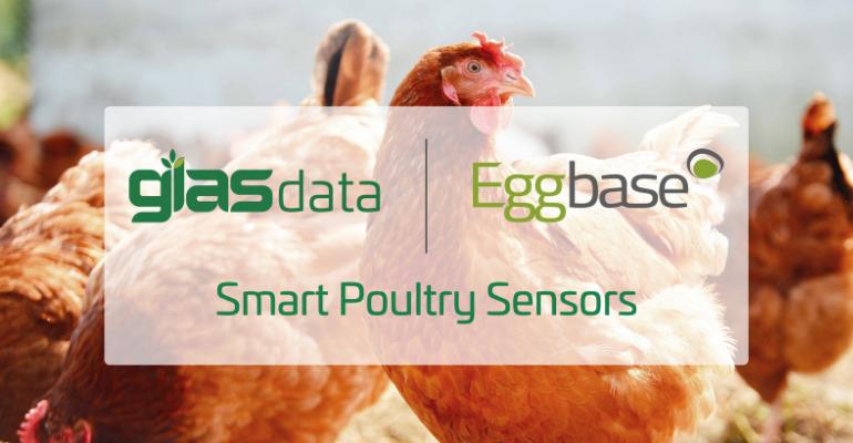 Glass Data EggBase